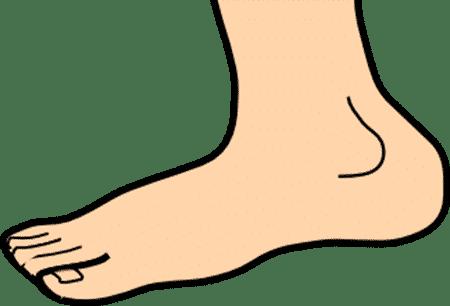 Foot Clip Art
